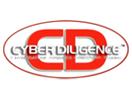 cyberdiligence