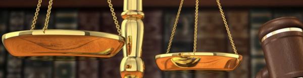difose adli bilisim veri kurtarma ve elektronik arama hizmetleri